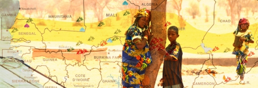 Σαχέλ: Γνωρίστε τη συνολική δράση των Γιατρών Χωρίς Σύνορα